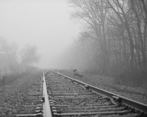 RailTracksBW