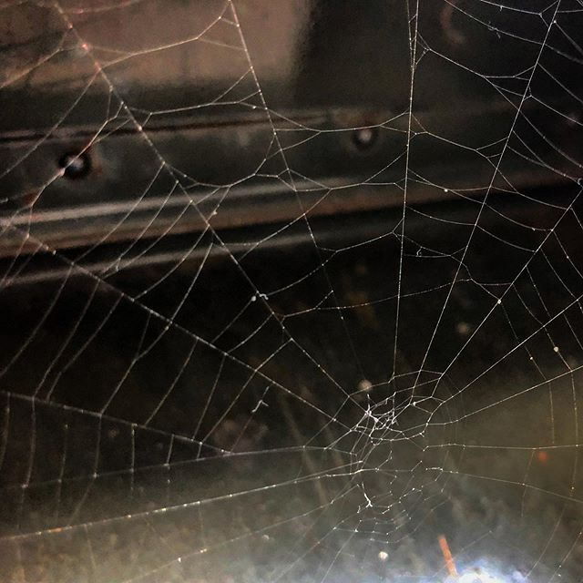 Mailbox Spiderweb