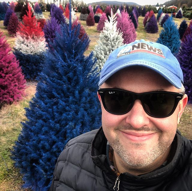 Yup, they're real! These trees are a hot commodity for the person looking for something unique this Christmas 🎄